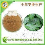 天然植物源杀虫剂,鱼藤酮母液,鱼藤酮素20%