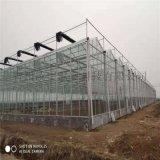連棟玻璃溫室 溫室大棚設計 全國聯保