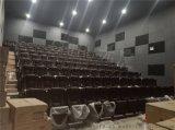 廣東赤虎定制禮堂劇院椅 連排影視廳影院椅