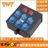 BXS8050粉尘防爆防腐检修电源插座箱(IIC) 防腐插座箱