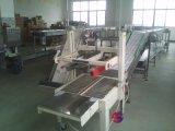 易拉罐链板输送机,塑料瓶链板输送机,链板输送机