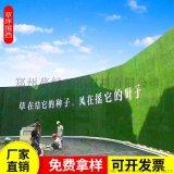供應環保綠色防塵土工布防塵網裝飾草坪
