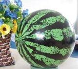 儿童球类玩具-西瓜球(9英寸)
