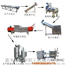 葡萄酒廠家釀酒前期處理生產線 果蔬汁前處理生產線