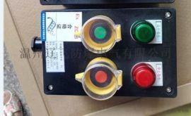 FZC-S-A2B1D2K1G防水防塵防腐操作柱