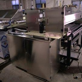 刷蛋机,隧道炉刷蛋机,大型隧道炉用刷蛋机