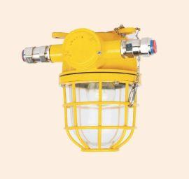 防爆灯dF1防爆舱顶灯不锈钢灯CCS船检