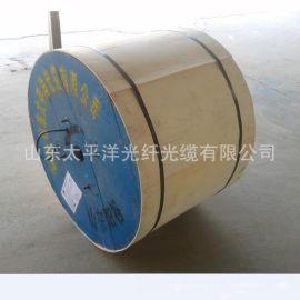 供應太平洋光纜 GYXTW53鎧裝光纜 中心管式 長飛光纖光纜