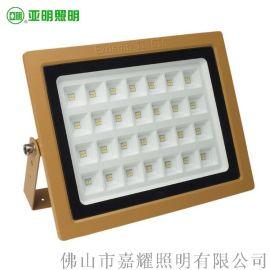 亞明照明YM-FBTGD防爆LED投光燈