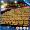 广东赤虎订制礼堂椅 剧院椅 影院椅 场馆椅 音乐厅座椅CH-806
