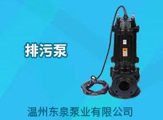 溫州東泉泵業有限公司