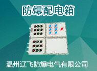 溫州遼飛防爆電氣有限公司
