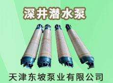 天津东坡泵业有限公司
