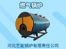 河北藝能鍋爐有限責任公司