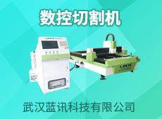 武汉蓝讯科技有限公司