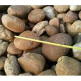 天然鵝卵石