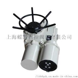 DZW60-24-A00-WK閥門電動裝置