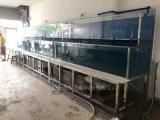 酒店海鲜鱼池|深圳定做饭店海鲜池|深圳梯形三层鱼池