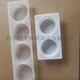 食品级PP塑料面盒多功能圆形方形手排面烘干盒