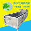 香菇气泡式清洗机 商用净菜加工设备 厂家直销