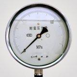 Y(N)-BF系列全不鏽鋼壓力表