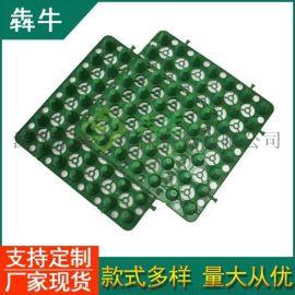 口碑厂家:济南市地下室蓄排水板-持久耐压)质量保证