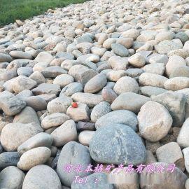 批发变压鹅卵石 水处理鹅卵石  景观鹅卵石