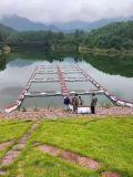 塑料養殖網 養殖箱 塑料養魚網箱