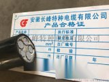安徽长峰硅橡胶电缆GGP2/3*70屏蔽电缆供应