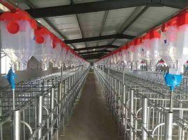 养猪设备全自动喂料机猪舍自动料线猪场全自动喂料系统