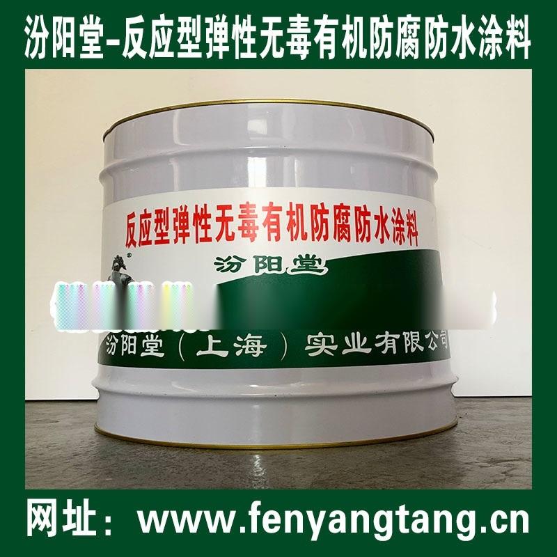 反应型弹性无毒有机防水防腐涂料,水处理系统防水防腐