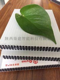 重庆塑料模板厂****pp建筑塑料中空板