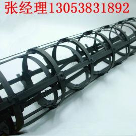 高强钢塑土工格栅GSZ30-30