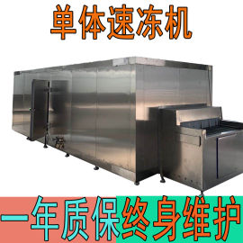 全自动速冻流水线 食品速冻机