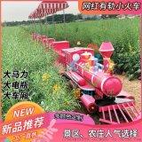 骑乘式网红小火车轨道观光小火车接送游客玩耍