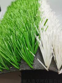 厂家直销 运动场地免冲沙人造草坪 人工草坪