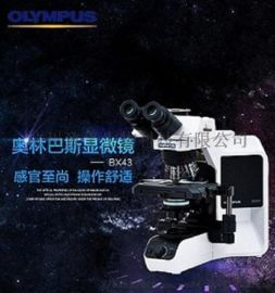 BX43 生物显微镜