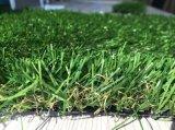仿真草坪厂家 室外装饰草皮 健身房人造草坪