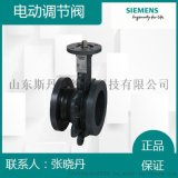 南京西門子VAF41.80-100