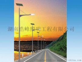 郴州安仁县民族风太阳能灯 太阳能市政工程路灯