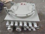 防爆配电箱防爆控制箱IIC防爆配电箱