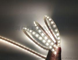 5050-60灯高压灯带 深圳厂家直销高压灯带 正白