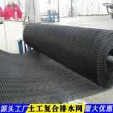 4mm土工複合排水網-湖南供貨商
