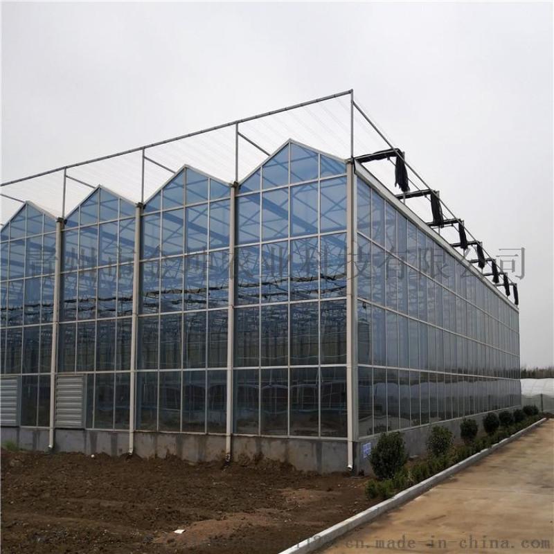 阳光板温室大棚工程 阳光板温室大棚设计