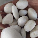 陝西白色卵石   永順雪花白卵石出售