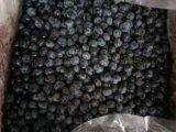 南京蓝莓冷冻果 厂家直销