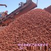 供应红色火山石 烤炉用多孔火山石  园艺火山石