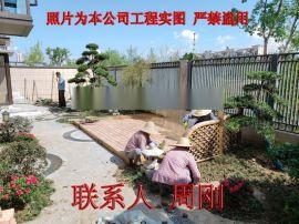 苏州别墅绿化景观设计 庭院绿化专业施工 精品树基地