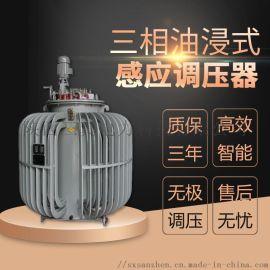 TSJA三相油浸式自耦感应调压器 电机实验调压器