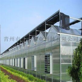 智能连栋温室大棚设计 智能温室大棚工程